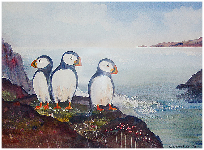 Puffins :: Watercolour 31cm x 41cm